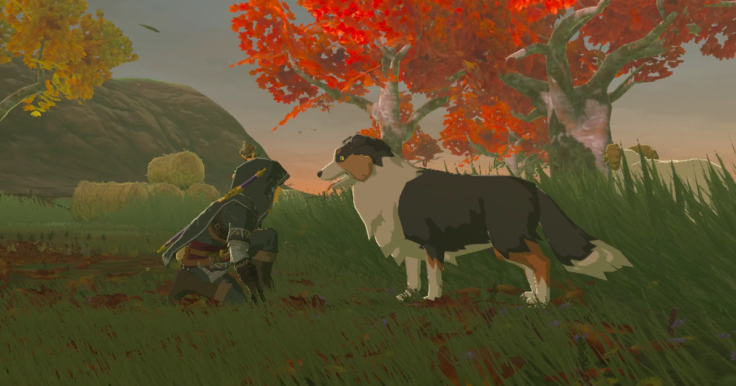 sweet dog from Breath of the Wild